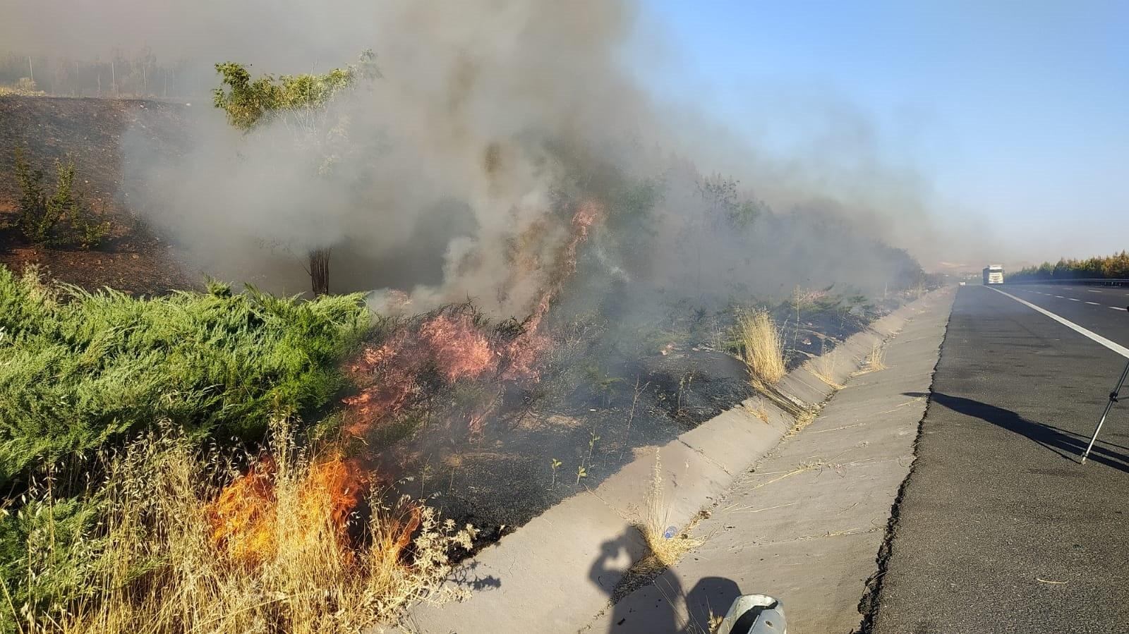 Şanlıurfa da orman yangını Urfa Haber