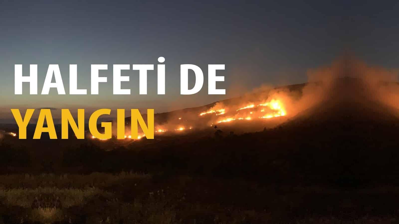 Halfeti ilçesinde yangın Urfa Haber
