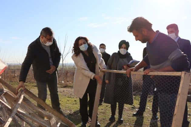 Büyükşehir belediyesi İpekböceği için sahada Urfa Haber