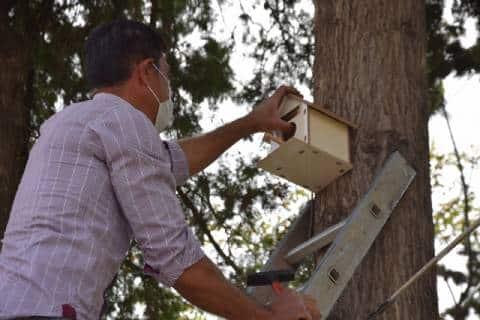 Viranşehir`de parkalara kuş yuvası yerleştirildi Haberler