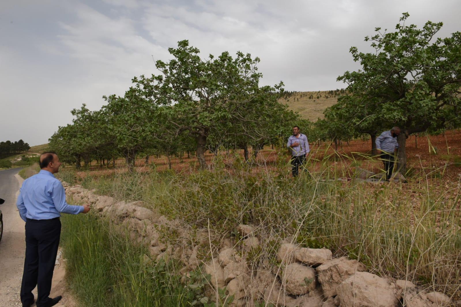 Vali Erin, Şehri Gezerek Vatandaşlarla Buluştu