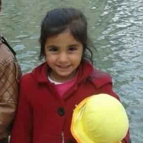 Suruc ilcesinde 8 yaşındaki  kızın  feci ölümü